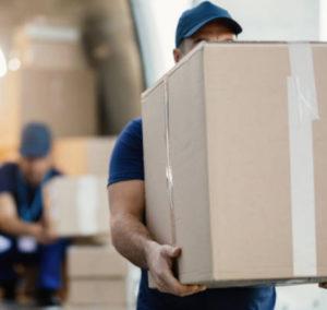 servicio distribución